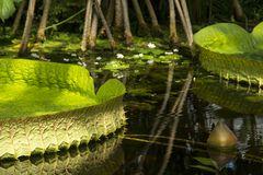 Besuch im Botanischen Garten-02