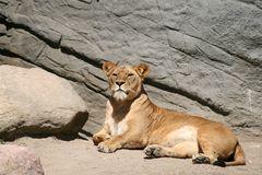 Besuch in Hagenbecks Tierpark