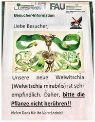 Besucher-Information