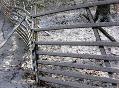 'Betreten verboten!' , sagte der Zaun...