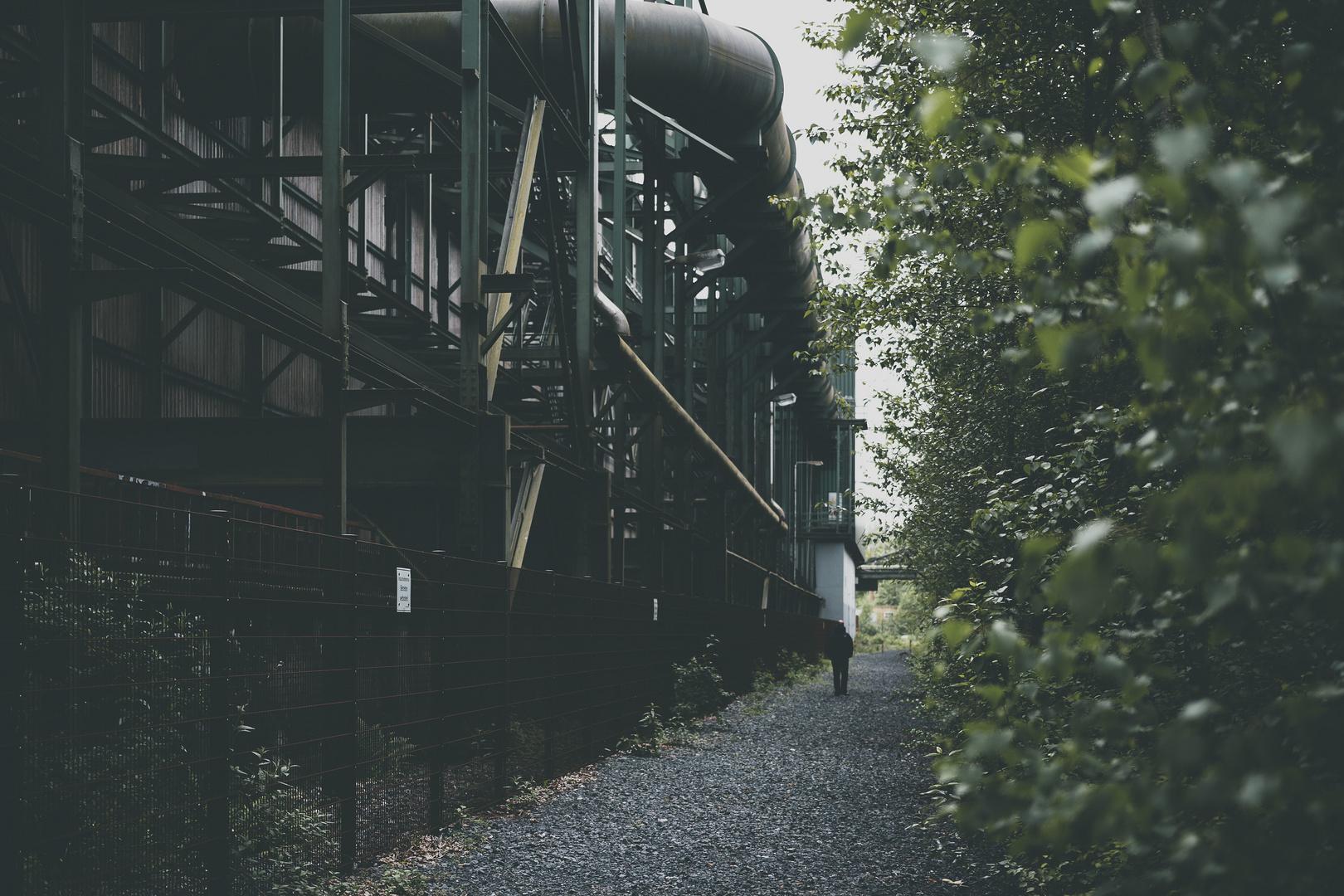 between steel and nature