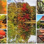 Bevor der Herbst zu Ende geht...