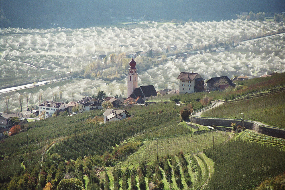 Bewässerung im Vinschgau