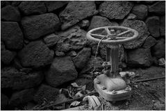 Bewässerungsventil