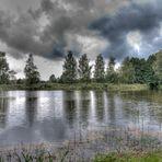 Bewegter Teich in der Oberlausitz
