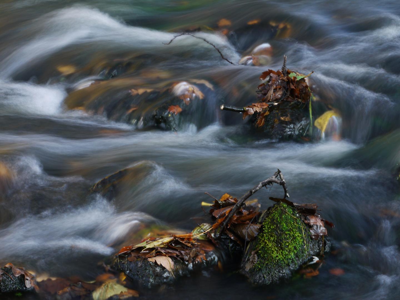 Bewegtes Wasser