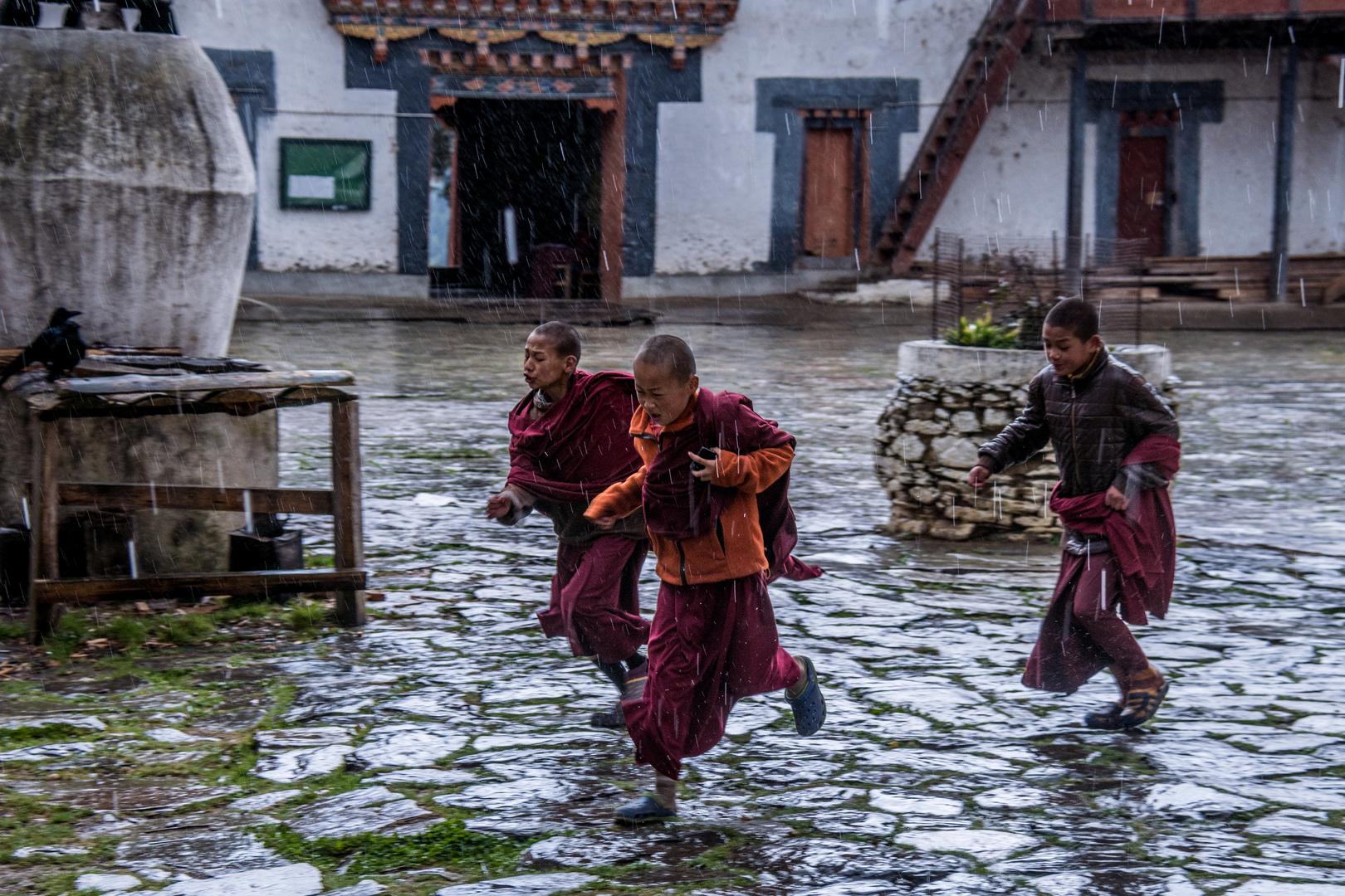 Bhutan, Junge Mönche auf der Flucht vor dem Regen