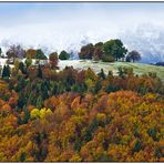 bianco autunno
