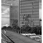 Bibliothèque F. Mitterant (3)