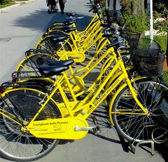 Bici Gialle