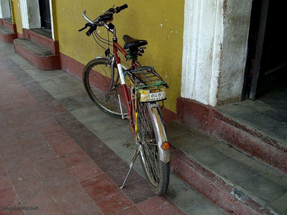 bicicletta con targa