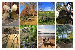 * Bicycle Race *