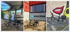 * Bicycle Tour *
