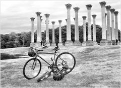 Bicycles and Columns