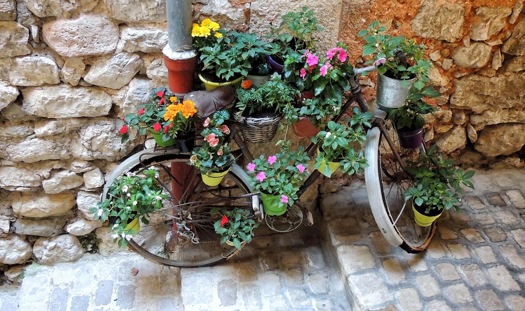 Bicyclette décorée