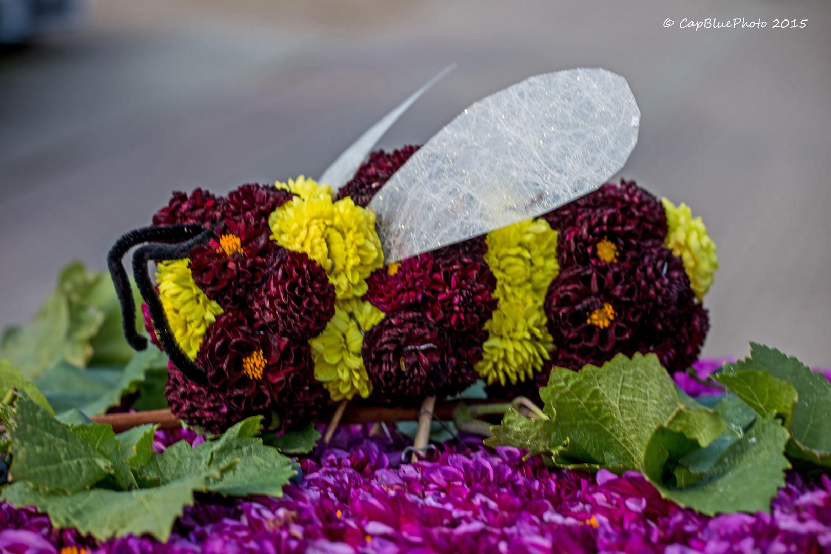 Biene aus Dahlien