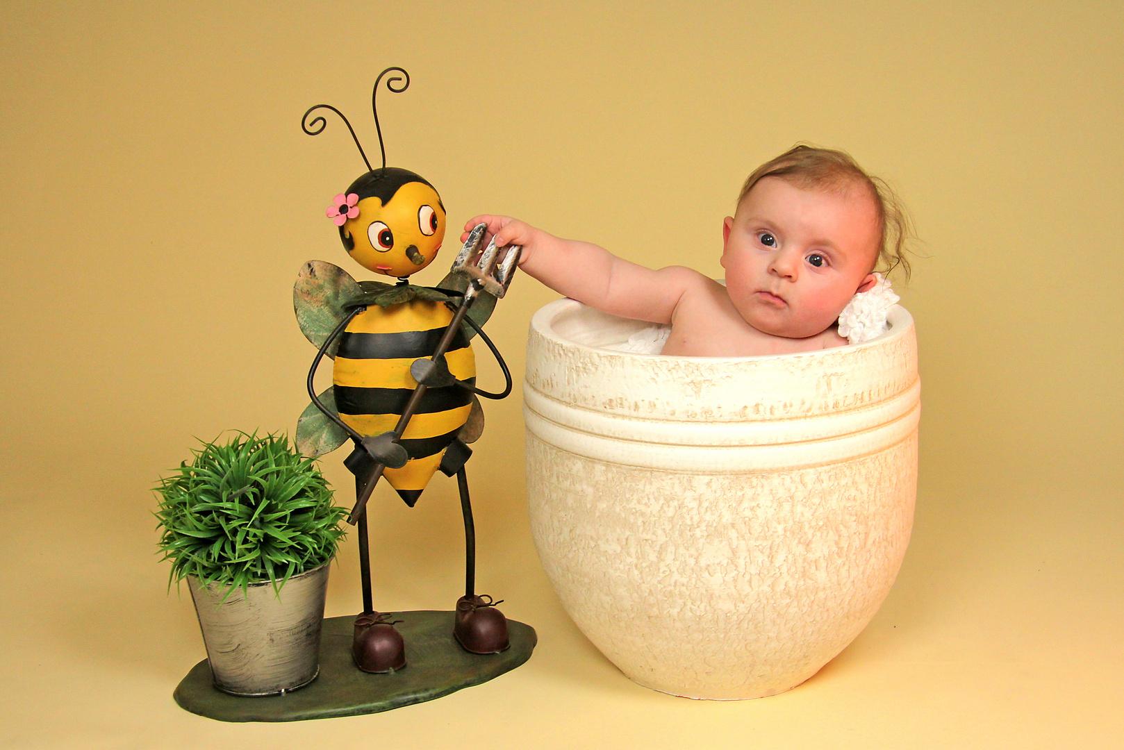 Biene und ich...