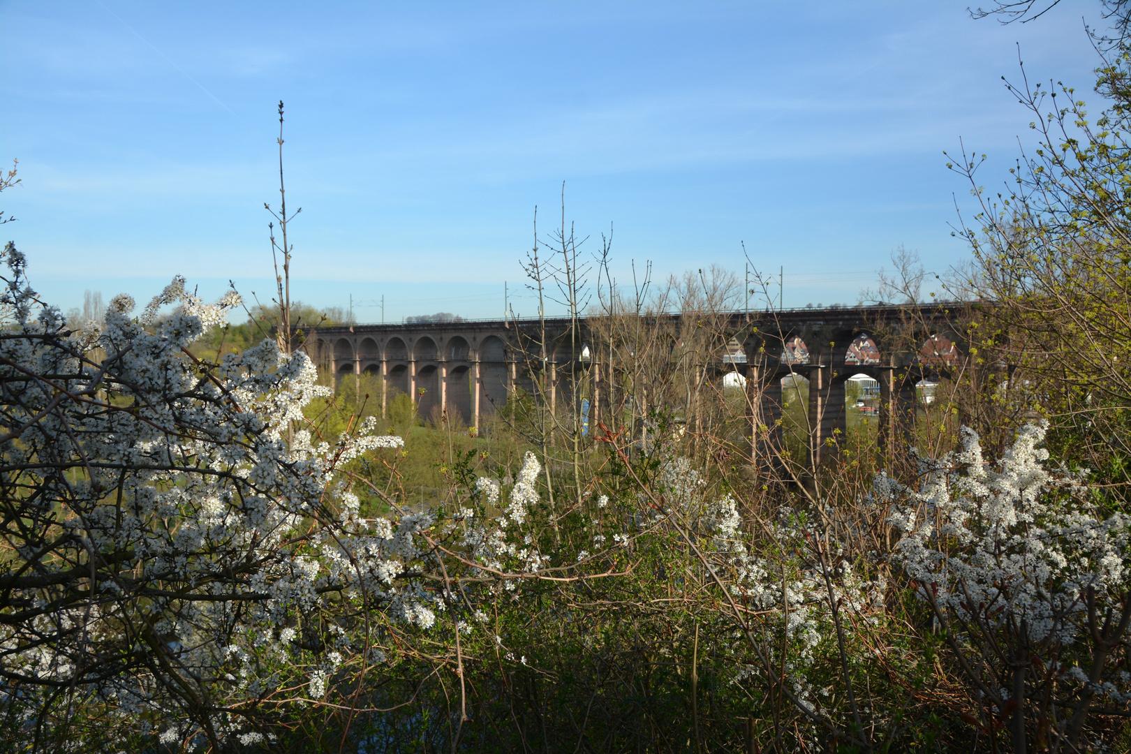 Bietigheim - Bissingen Viadukt im Frühling