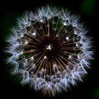 ...Big Bang ???...