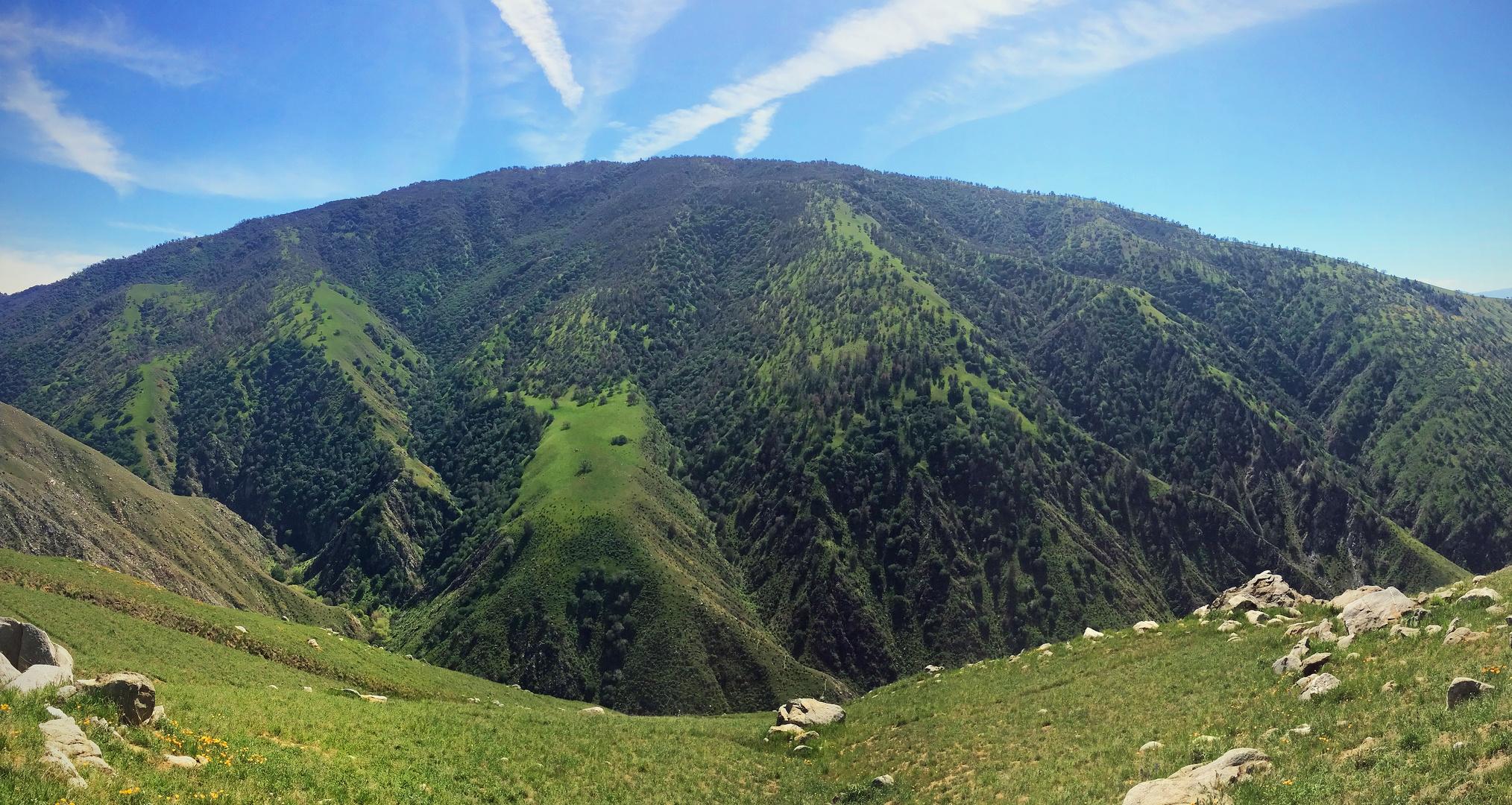 Big Green Hill