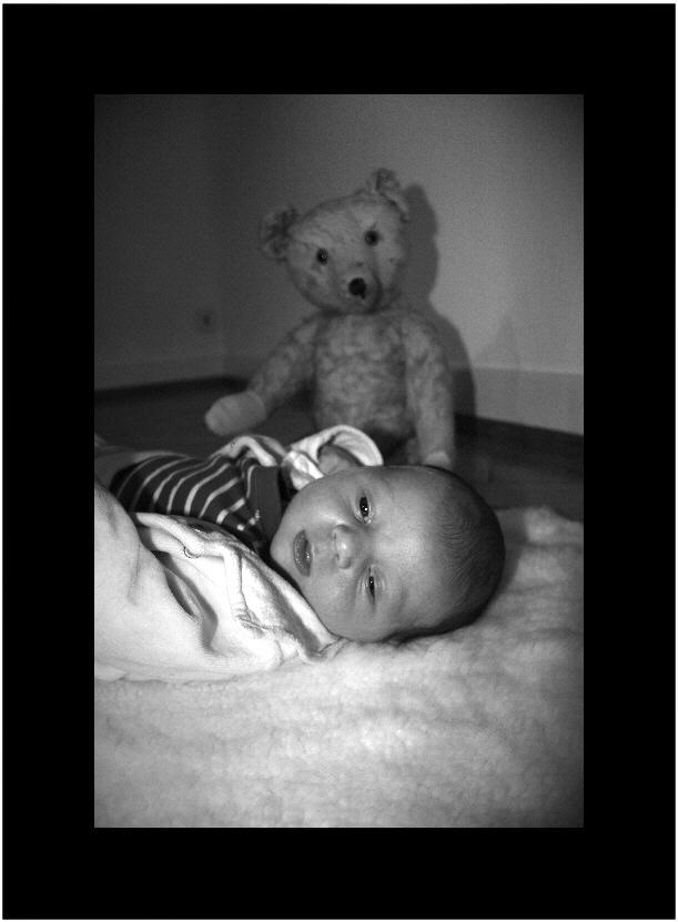 Big Teddy is watching you