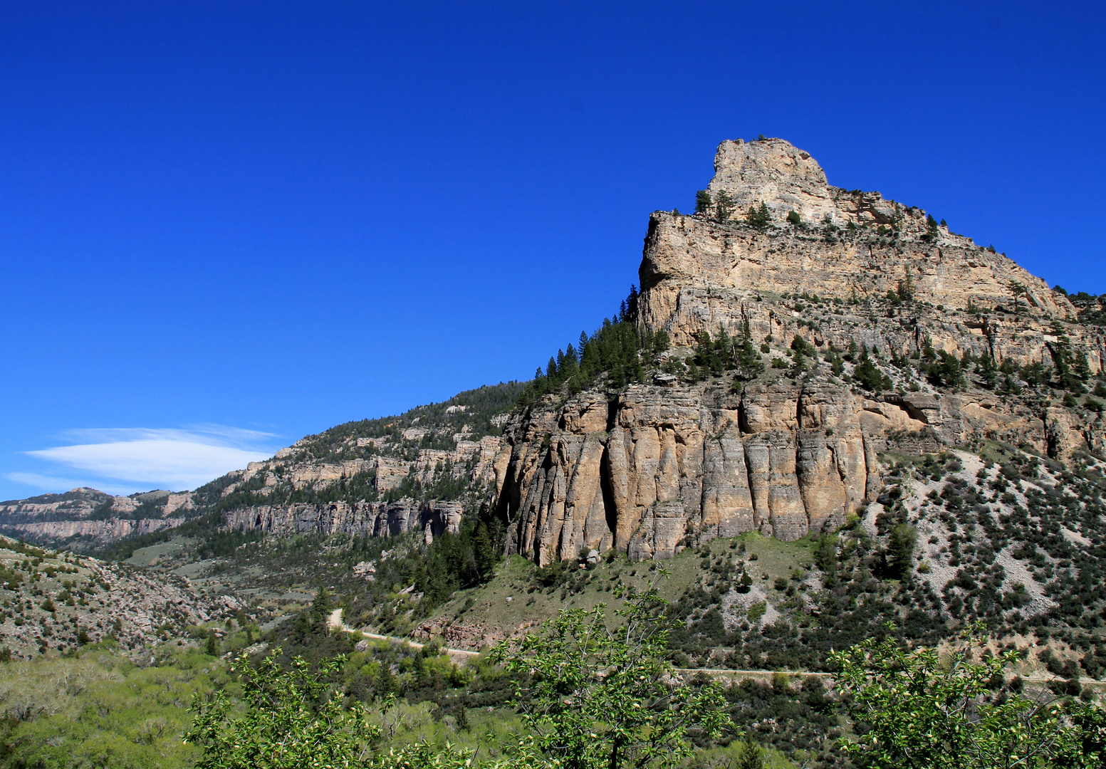 Bighorn National Forest, Wyoming,USA