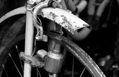 Bike 50s