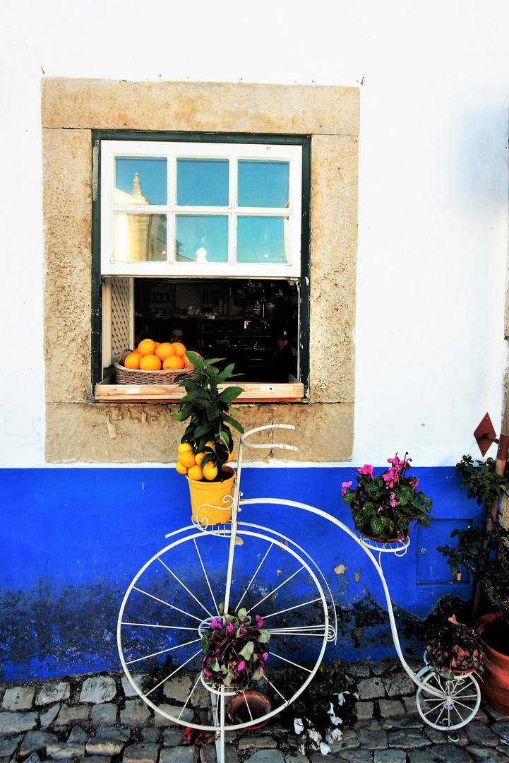 Bike in Blue