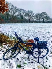 * Bike ride in the snow *