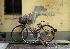 bike48