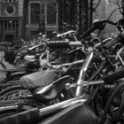 Bikes all over town