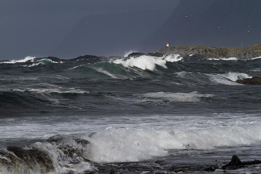 Bild 33: Muskelspiel des Nordmeeres
