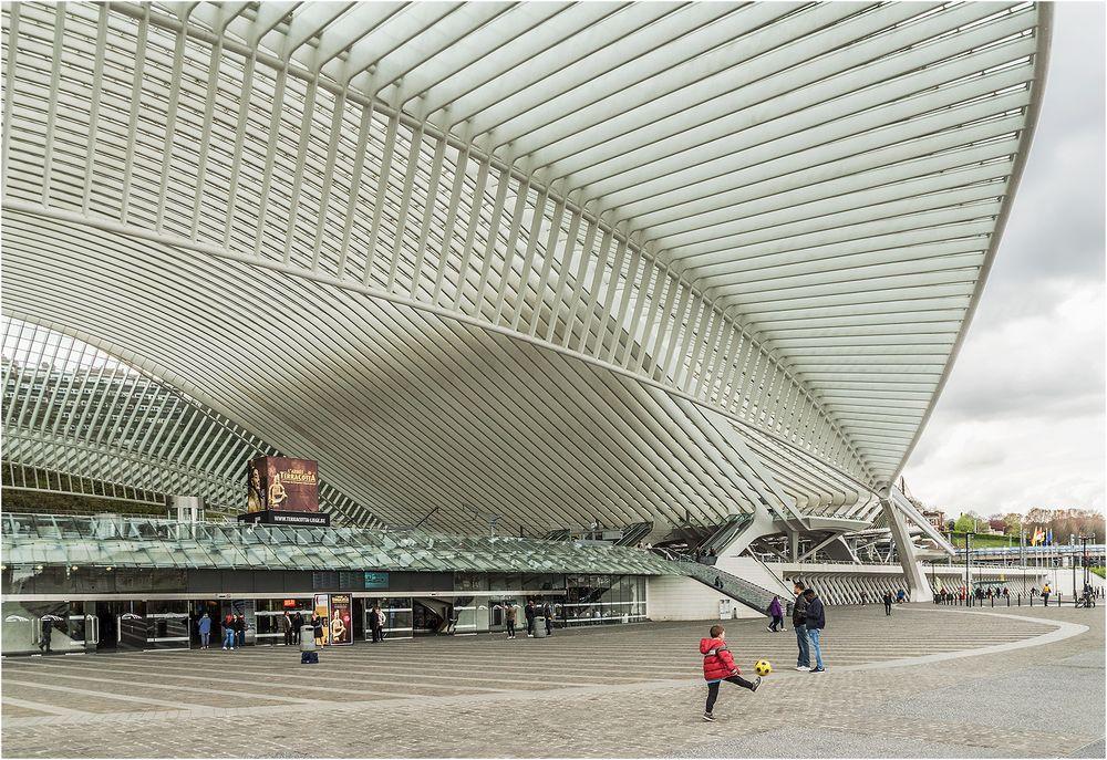 Bilder eines Bahnhofs (8)