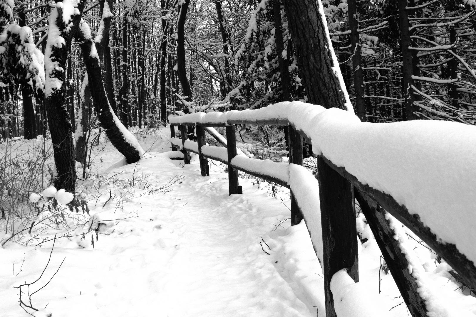 Bilderbuch-Winter
