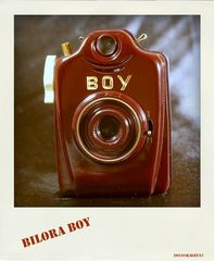 Bilora Boy - Weinrot