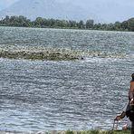 Bimba sul lago