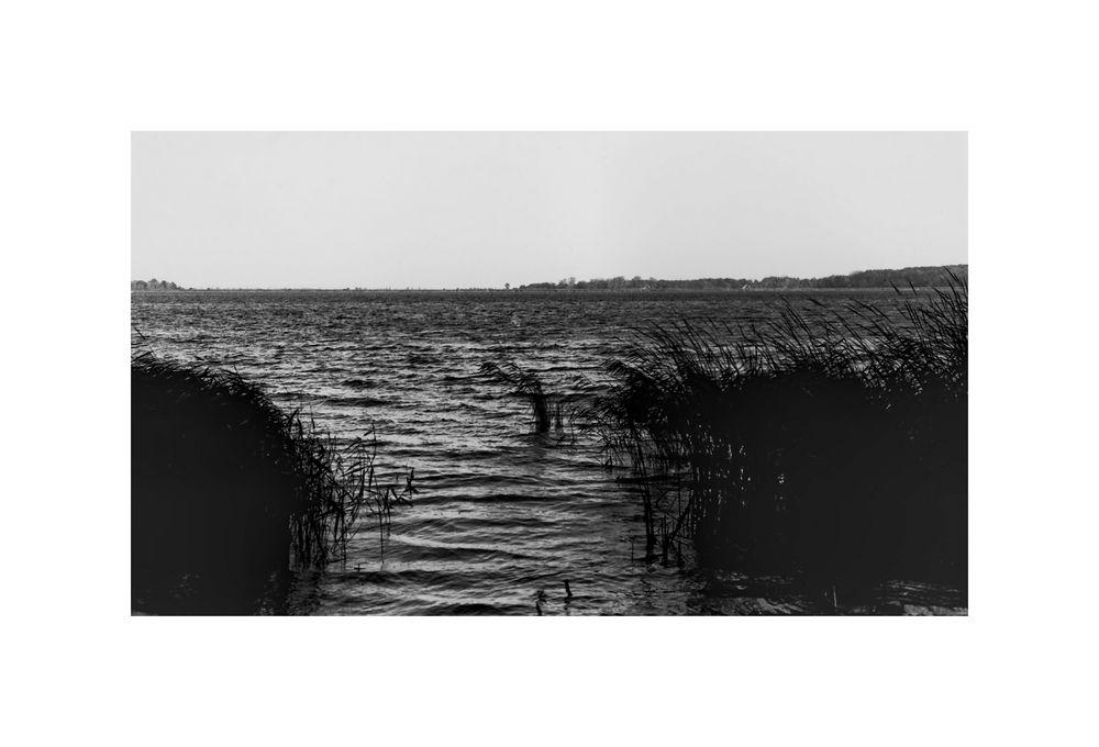 binnenwasser (1988 )