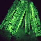 biolumineszenz, GRÜN