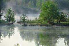 Biotopsee im Morgennebel