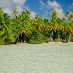 BIRD ISL: RANGIROA  OCEANIA TAHITI