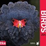 Birds 2013 - Africa Geographic