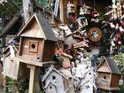 Bird's Home
