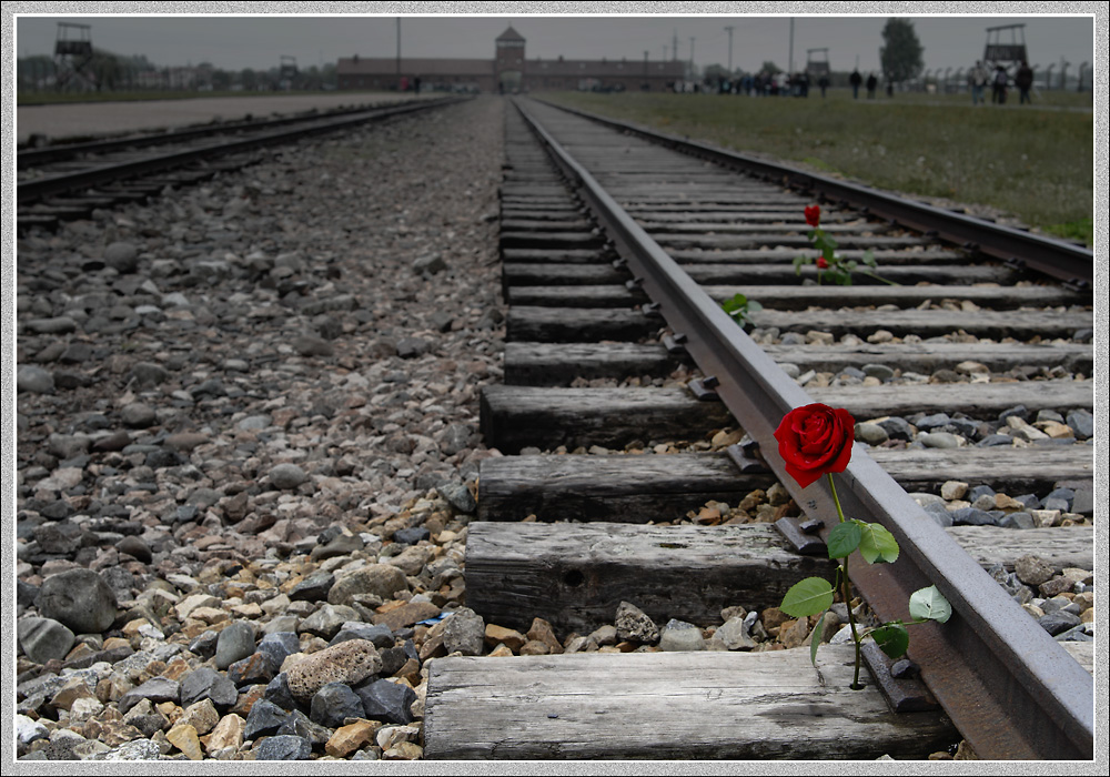 Birkenau-Auschwitz II