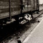 Birkenau - The Residence of Death 1