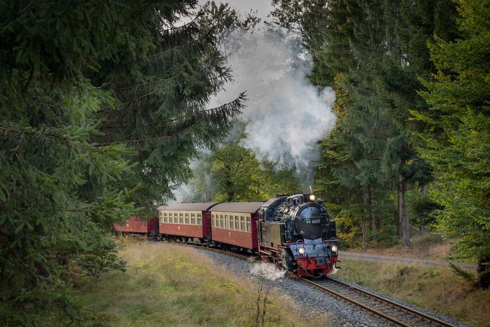 Birkenmoor, 99 6001