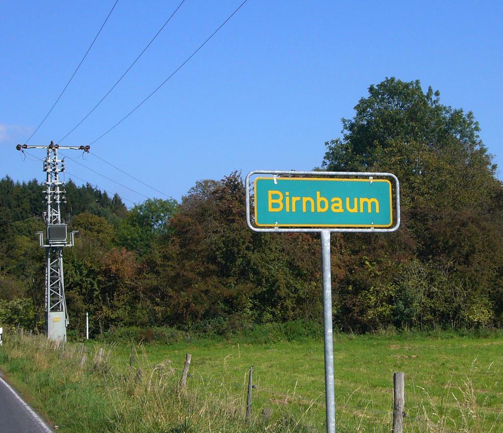 - Birnbaum -