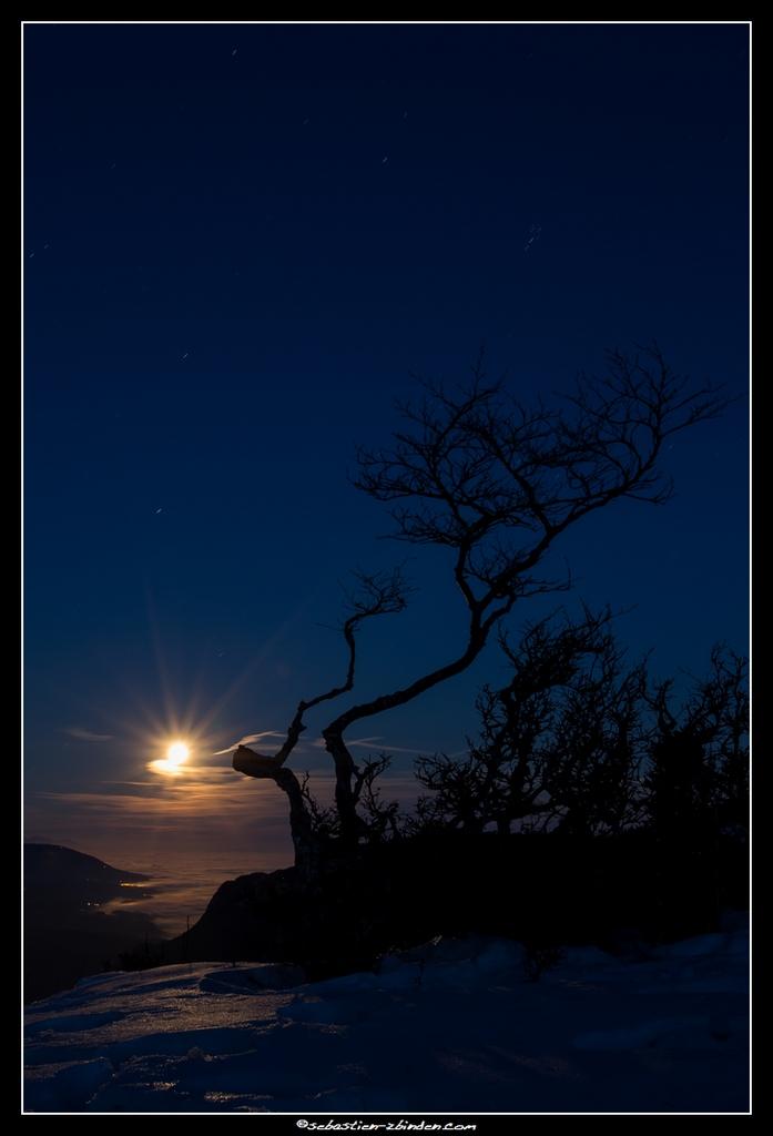Biscornu sous les feux de la lune