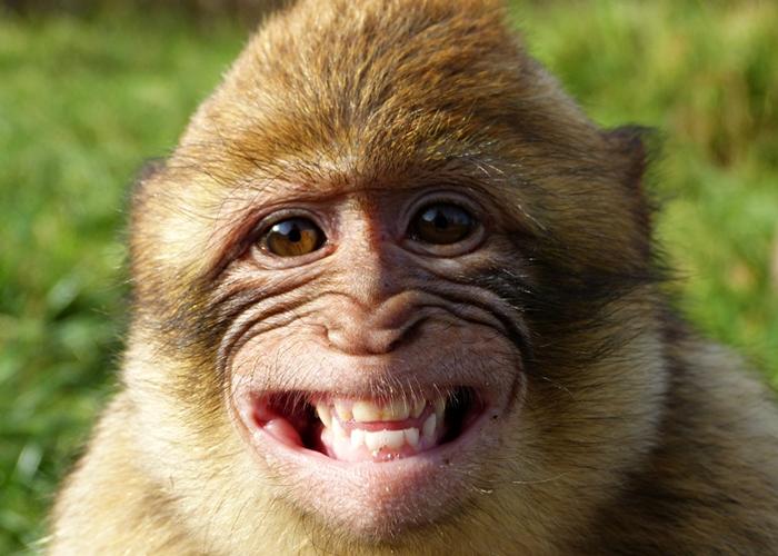 Bitte lächeln :-))