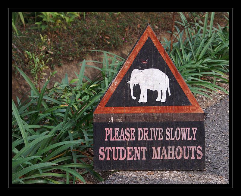 bitte langsam fahren...