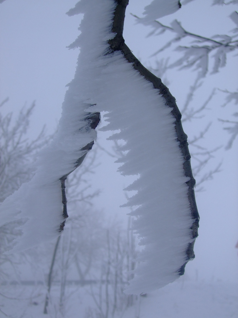 Bizarre Schneekunst No.I
